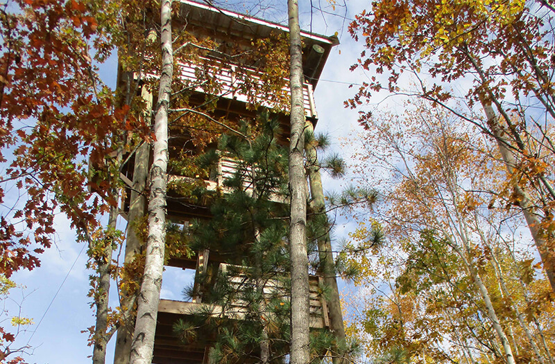 Tower on Brainerd zipline course
